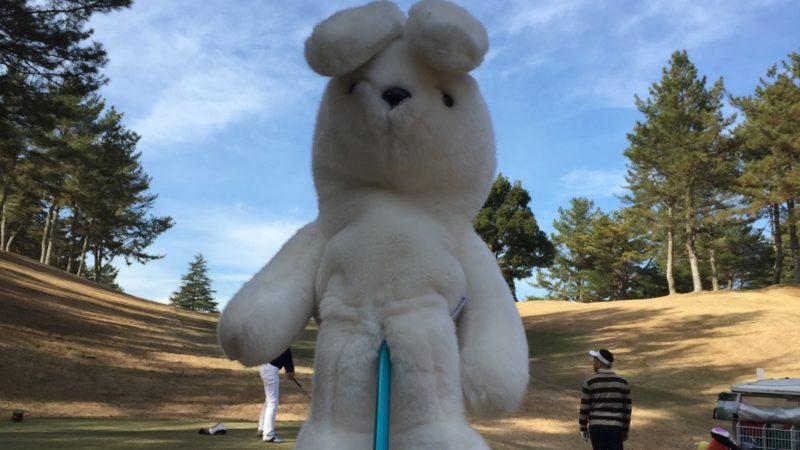 打ち納めのゴルフに行って来ました❗️鶴舞カントリークラブ