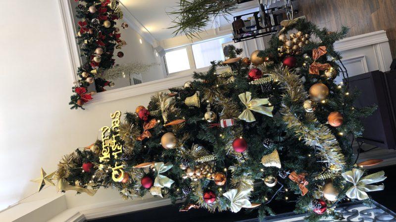 今年も早速クリスマスモード!